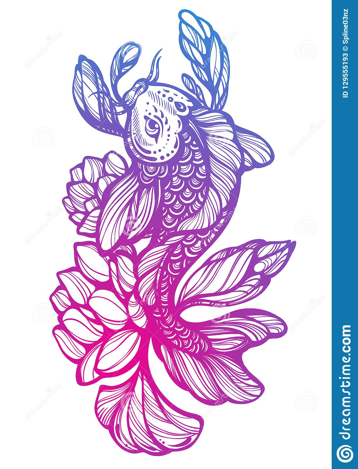 88023d722b7b3 High-detailed beautiful illustration of Koi carp fish with Lotus around.  Oriental decorative symbol. Hand-drawn vector artwork.