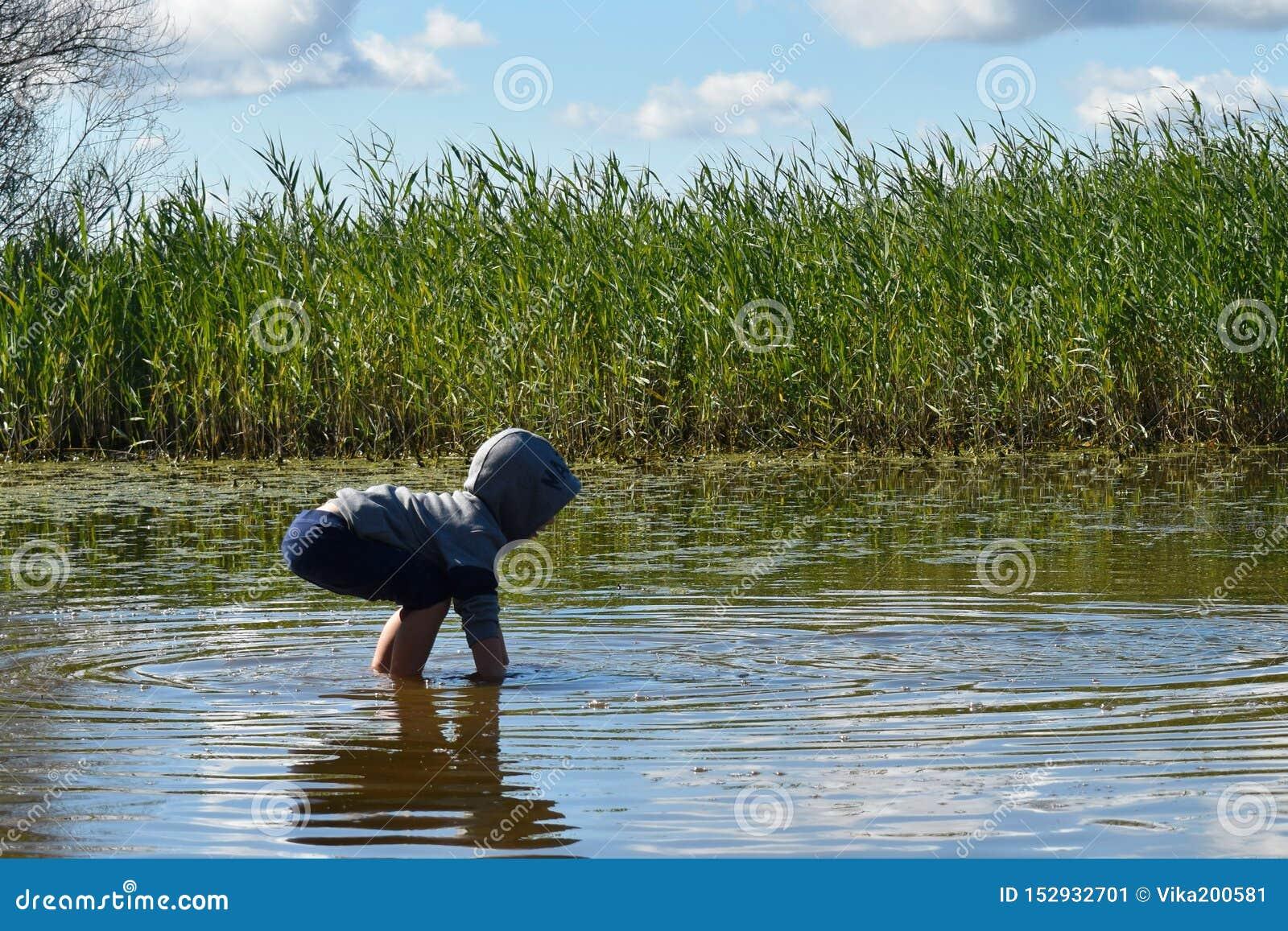 High green grass around the lake. Child walk in water