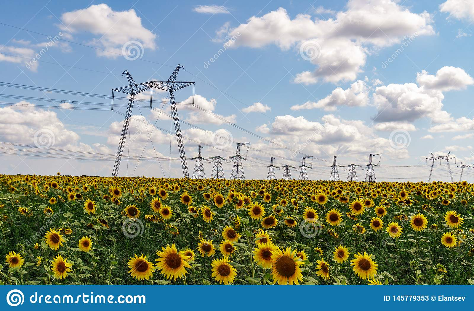 High power electricity poles in urban area. Energy supply, distribution of energy, transmitting energy, energy transmission, high