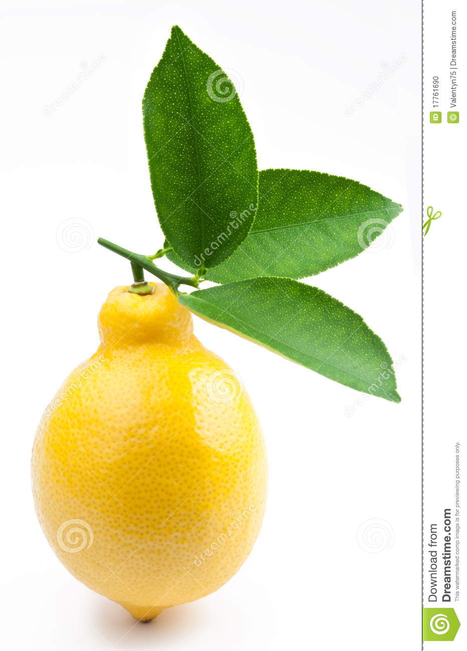 High-quality Photo Of Ripe Lemon Stock Photo