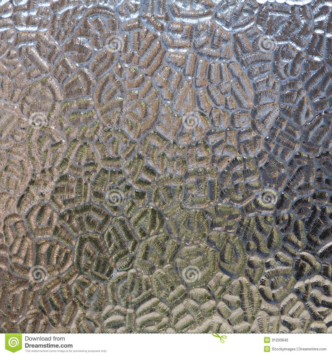 High Resolution Seamless Texture Royalty Free Stock Photo Image 31203845