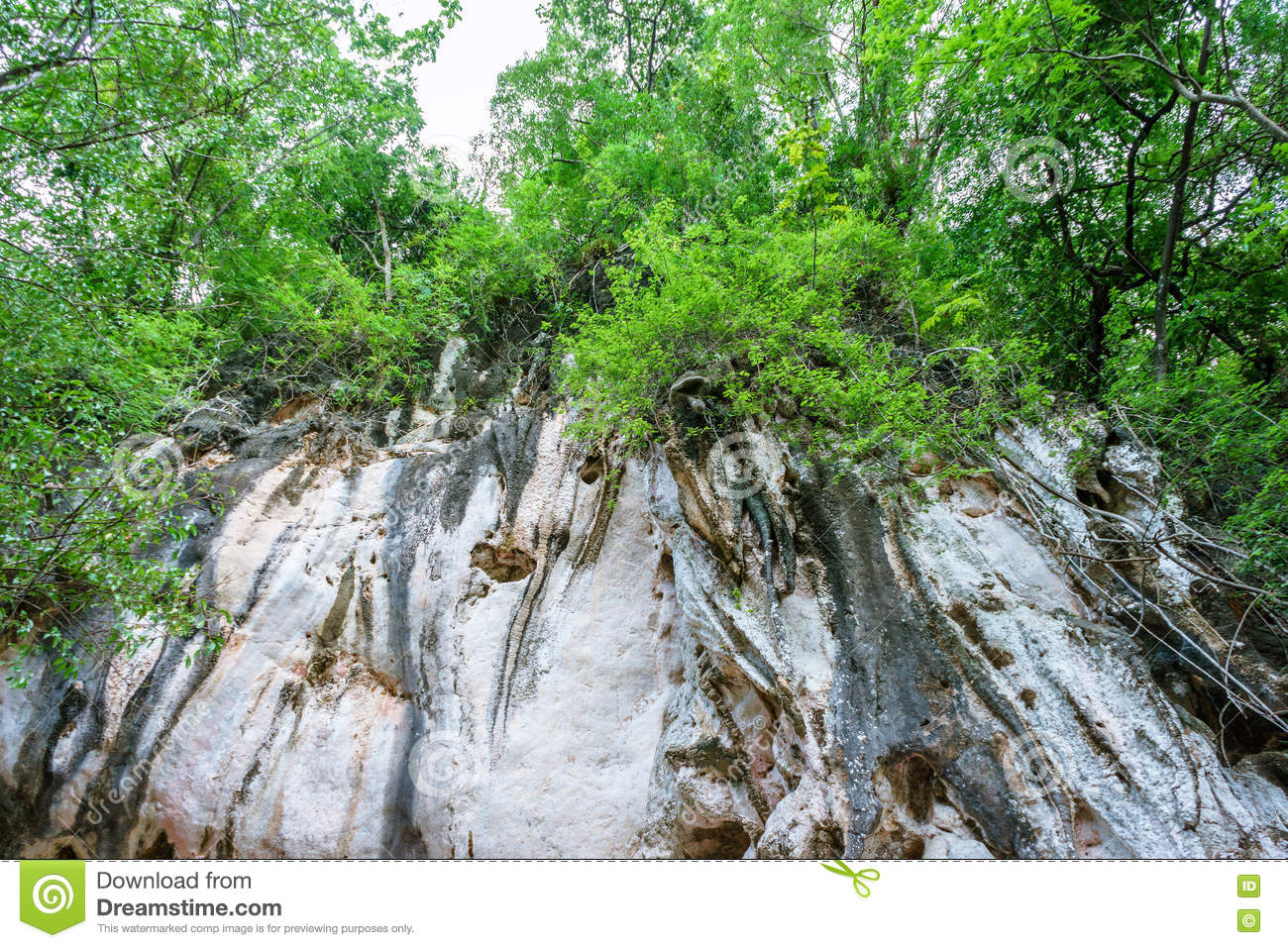 High rocky cliff in forest