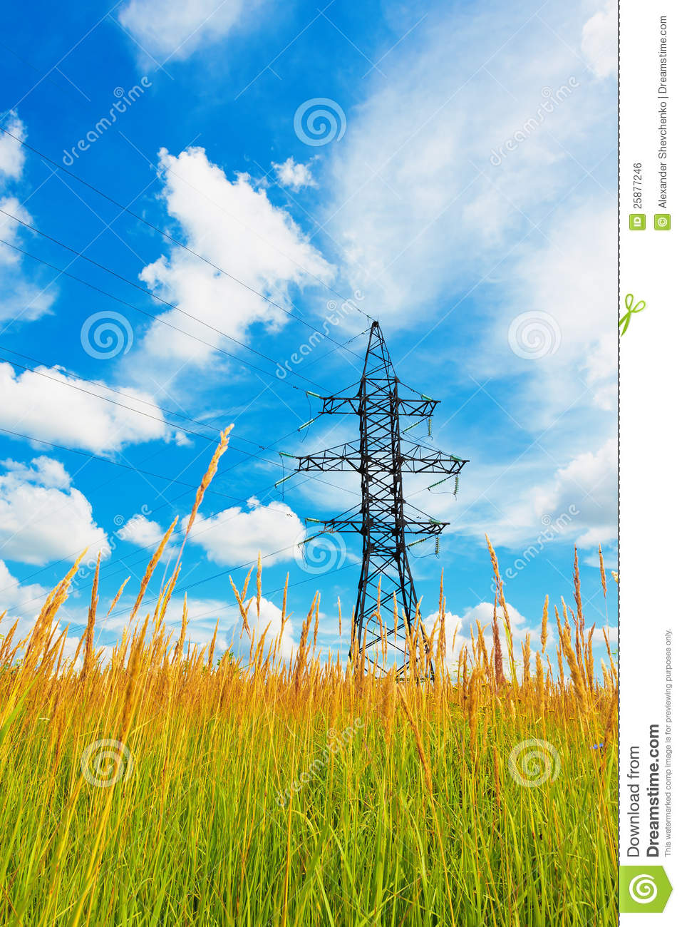 High Voltage Weeder : High voltage lines and cloudy sky royalty free stock image