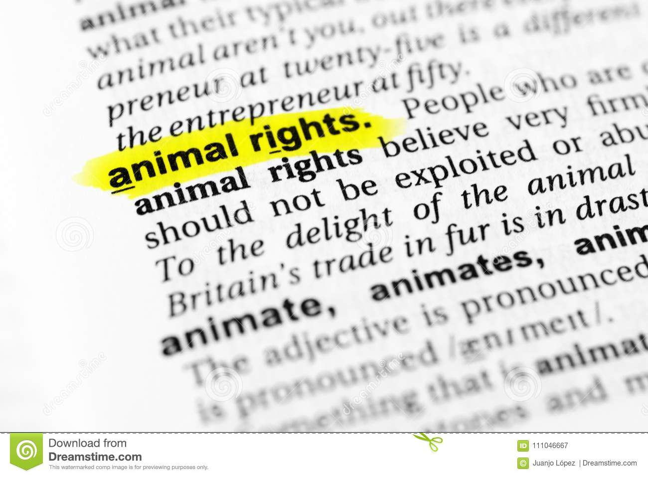 highlighted english word `animal rights` and its definition in the