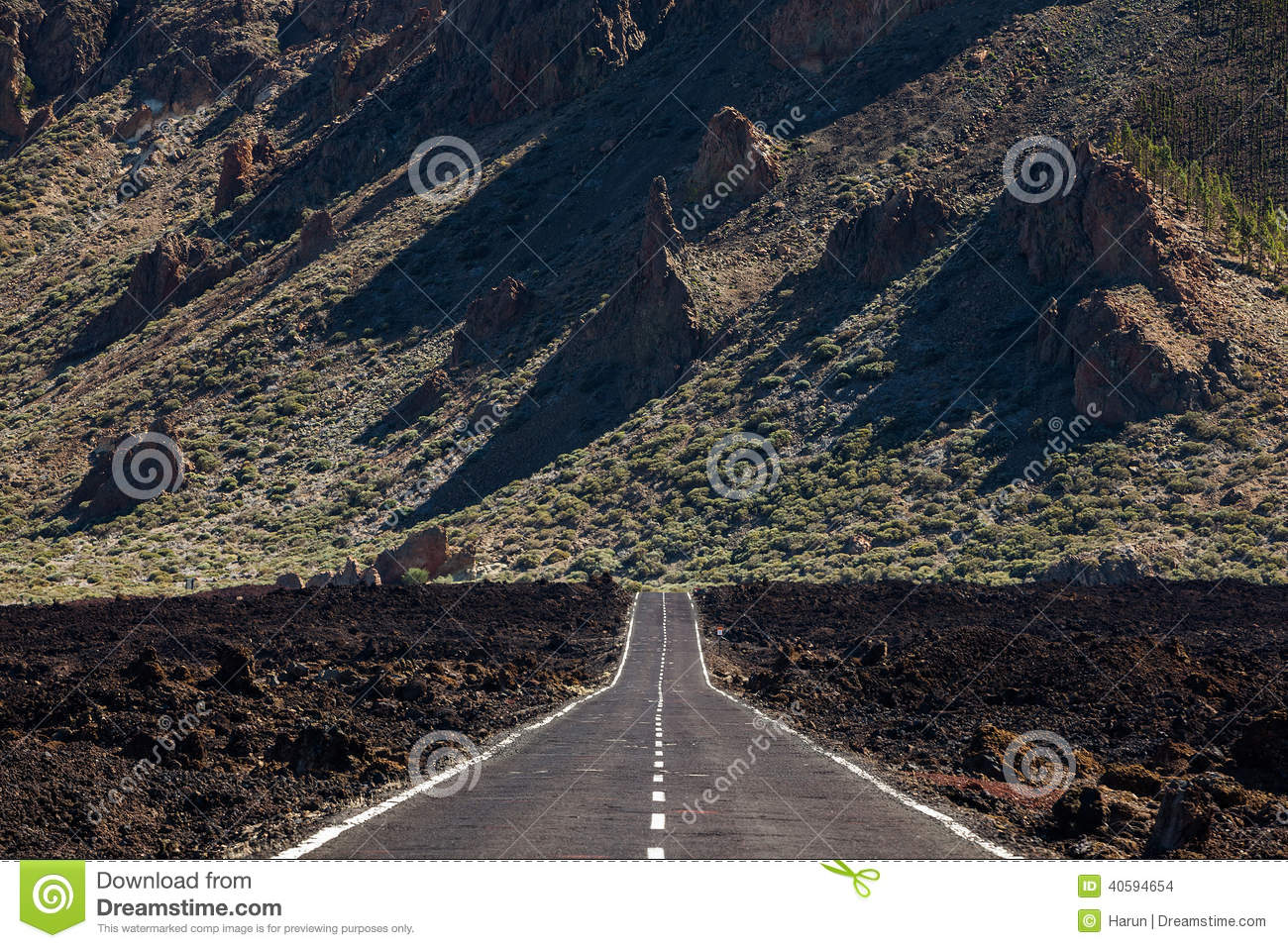 Scenic highway or road over an old lava flow near Mt. Teide Volcano ...
