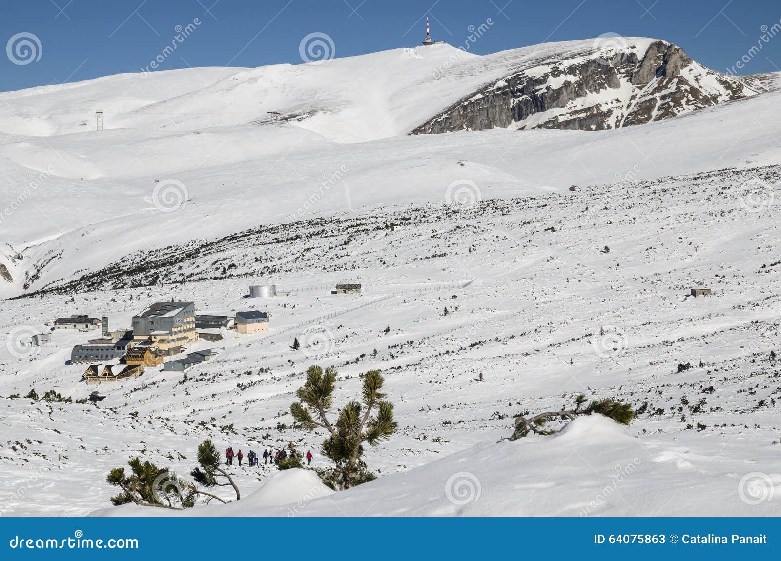 towards the snowy - photo #16