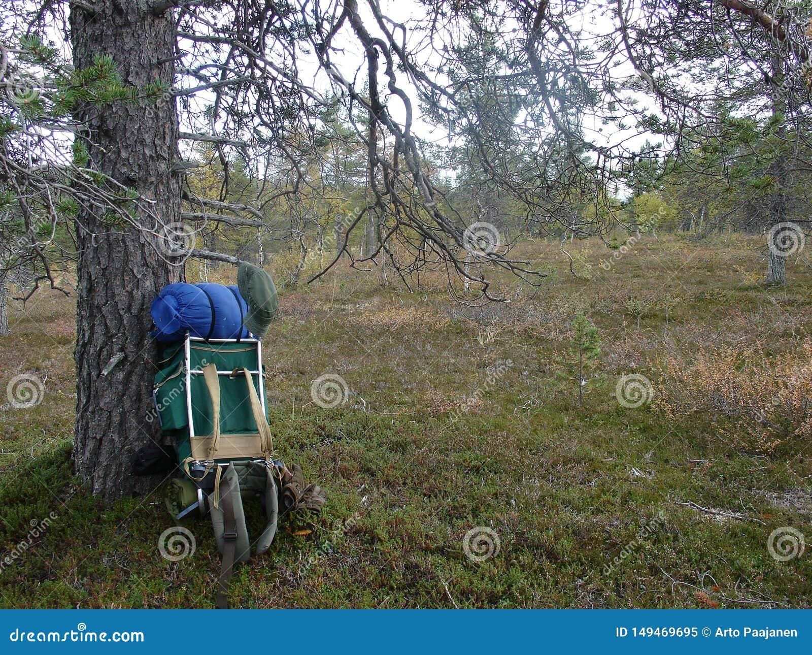 Hiker отдыхает без рюкзака в длинном дне