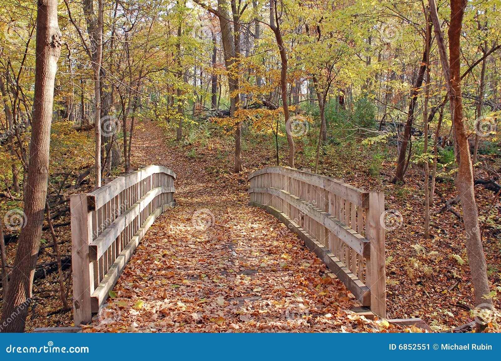 Hiking тропка в пуще осени