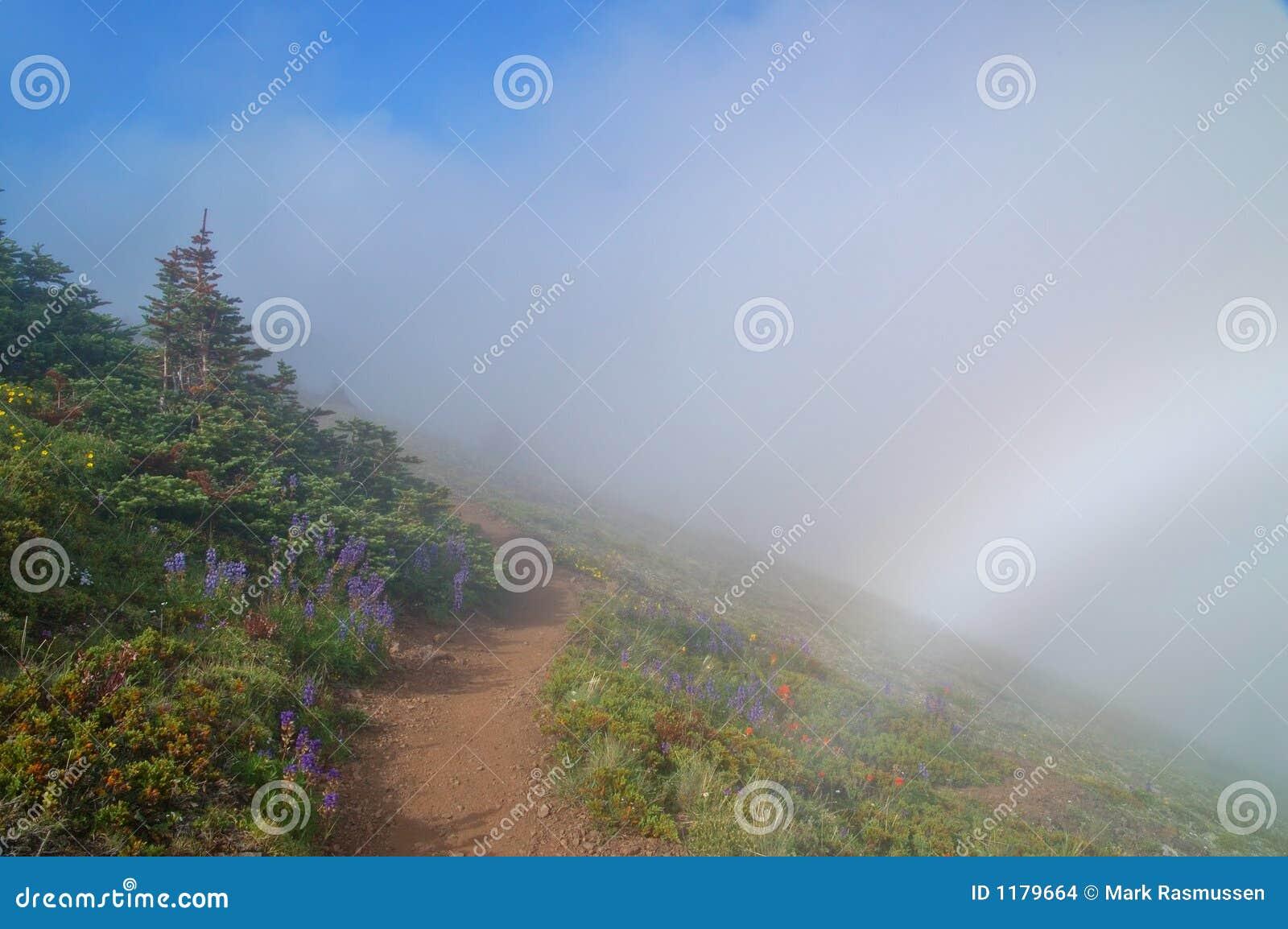 Hiking тропка гор