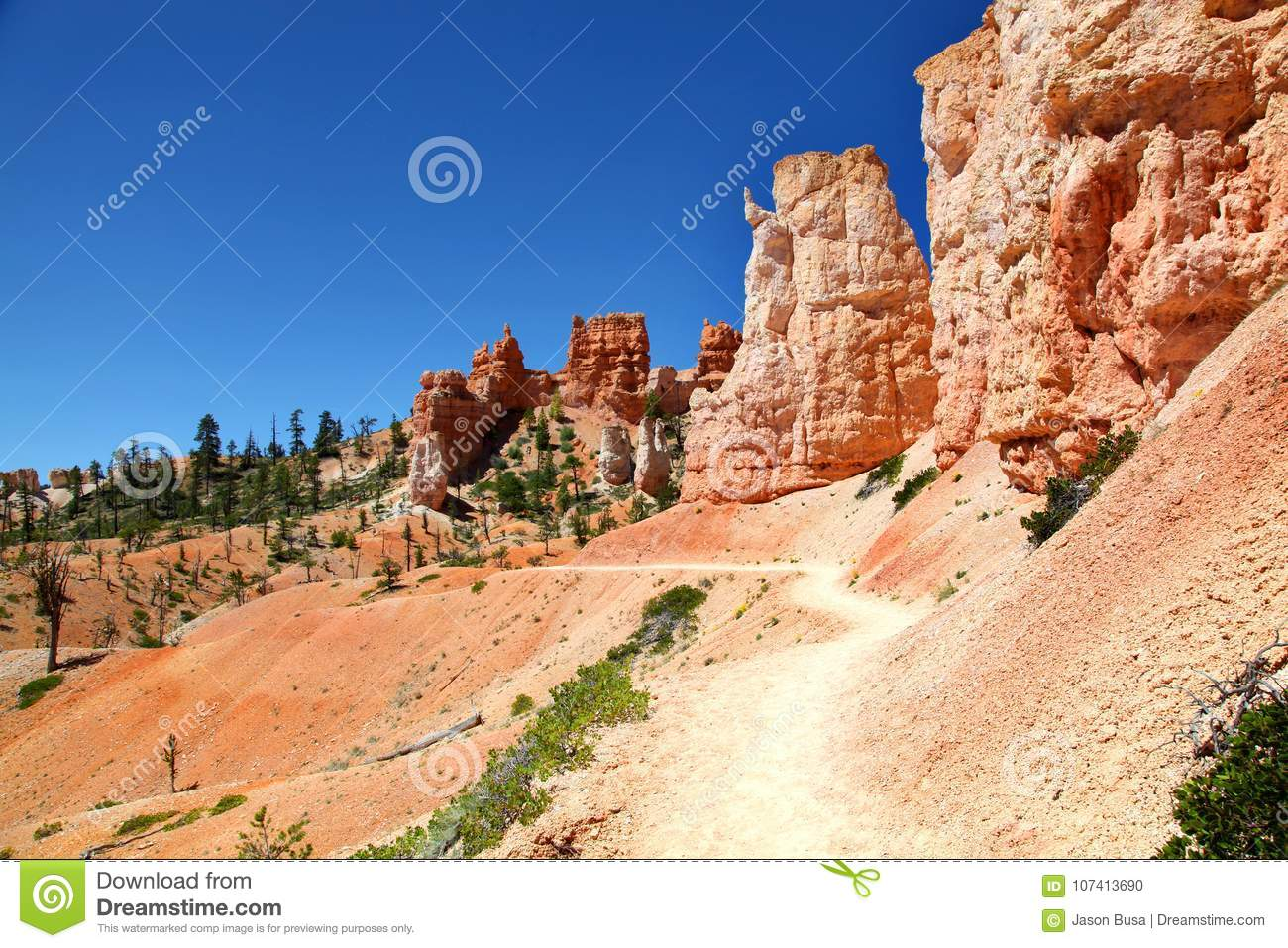 Hiking Along The Tower Bridge Trail In Bryce Canyon National Park Stock Photo Image Of Orange Desert 107413690
