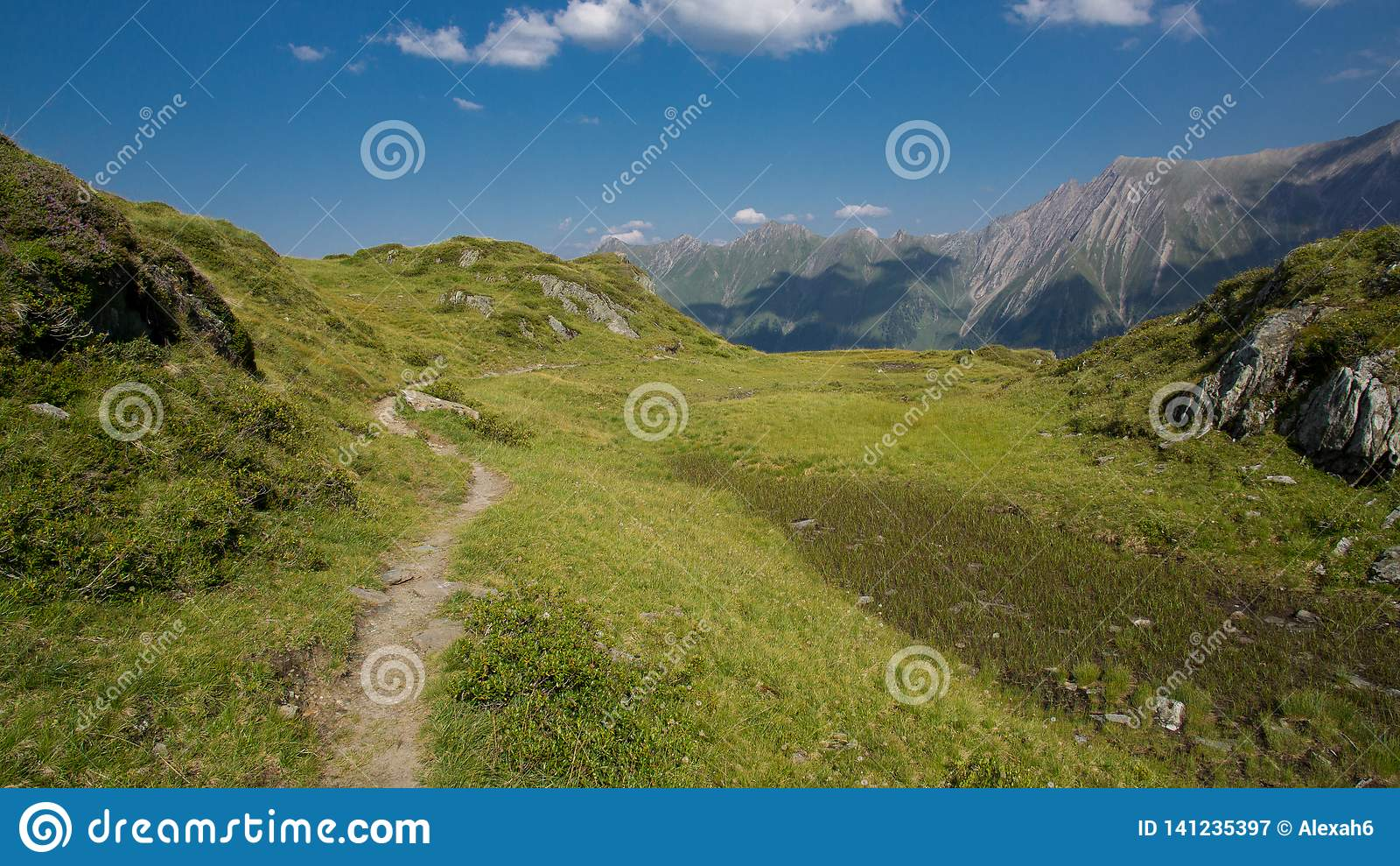 Hiking the alps in summer