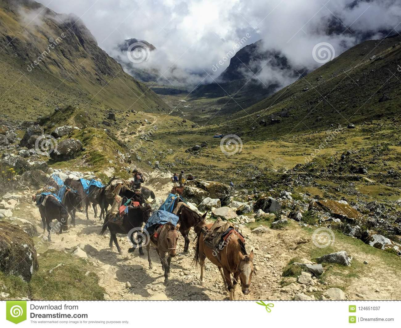 Hiking in the Andes along the Salkantay trail with a group of do