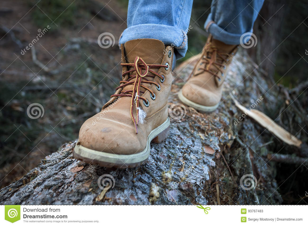 Hiking Boots Stock Image Image Of Hiking Adventure 93767483