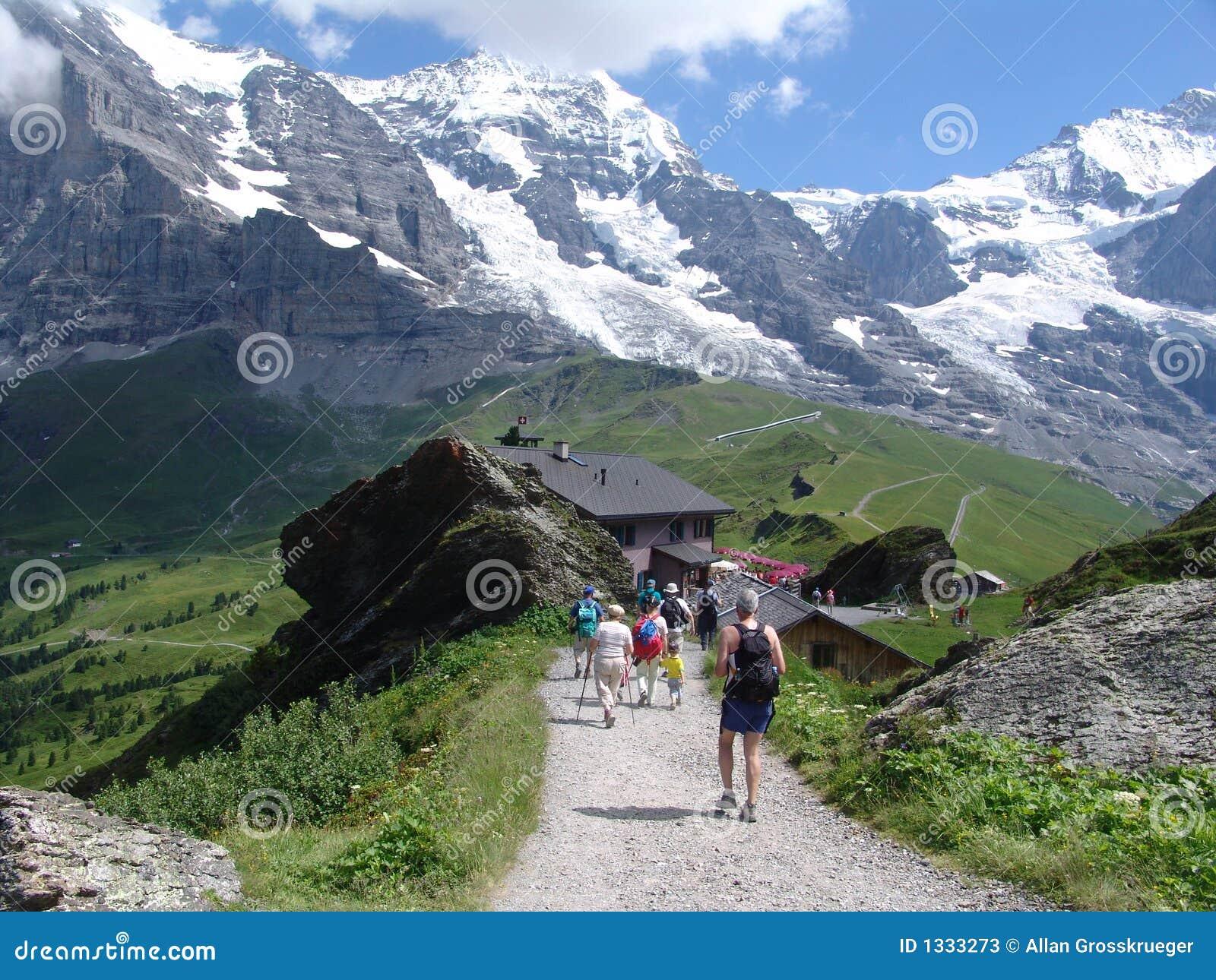 Hiking The Jungfrau Mountain Area Stock Image Image of trail
