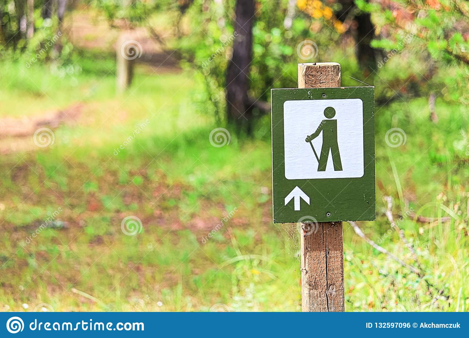 A hiking path sign with a forest in the background