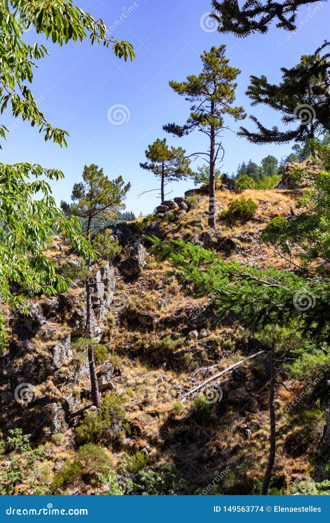 Hiking route in the Serra da Estrela near Manteigas, Portugal