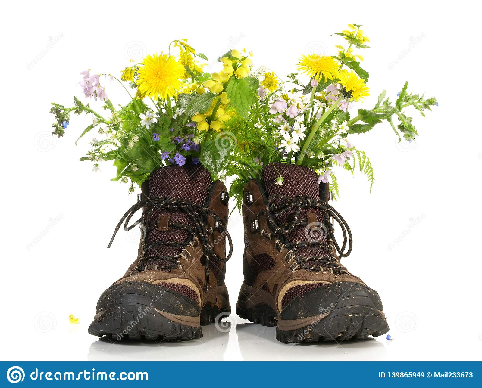 Hiking Shoes with Flowers