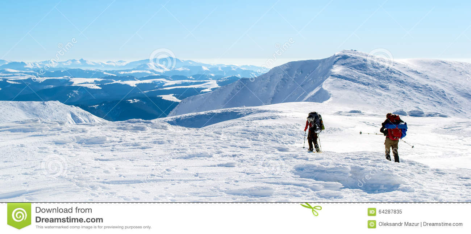 towards the snowy - photo #20