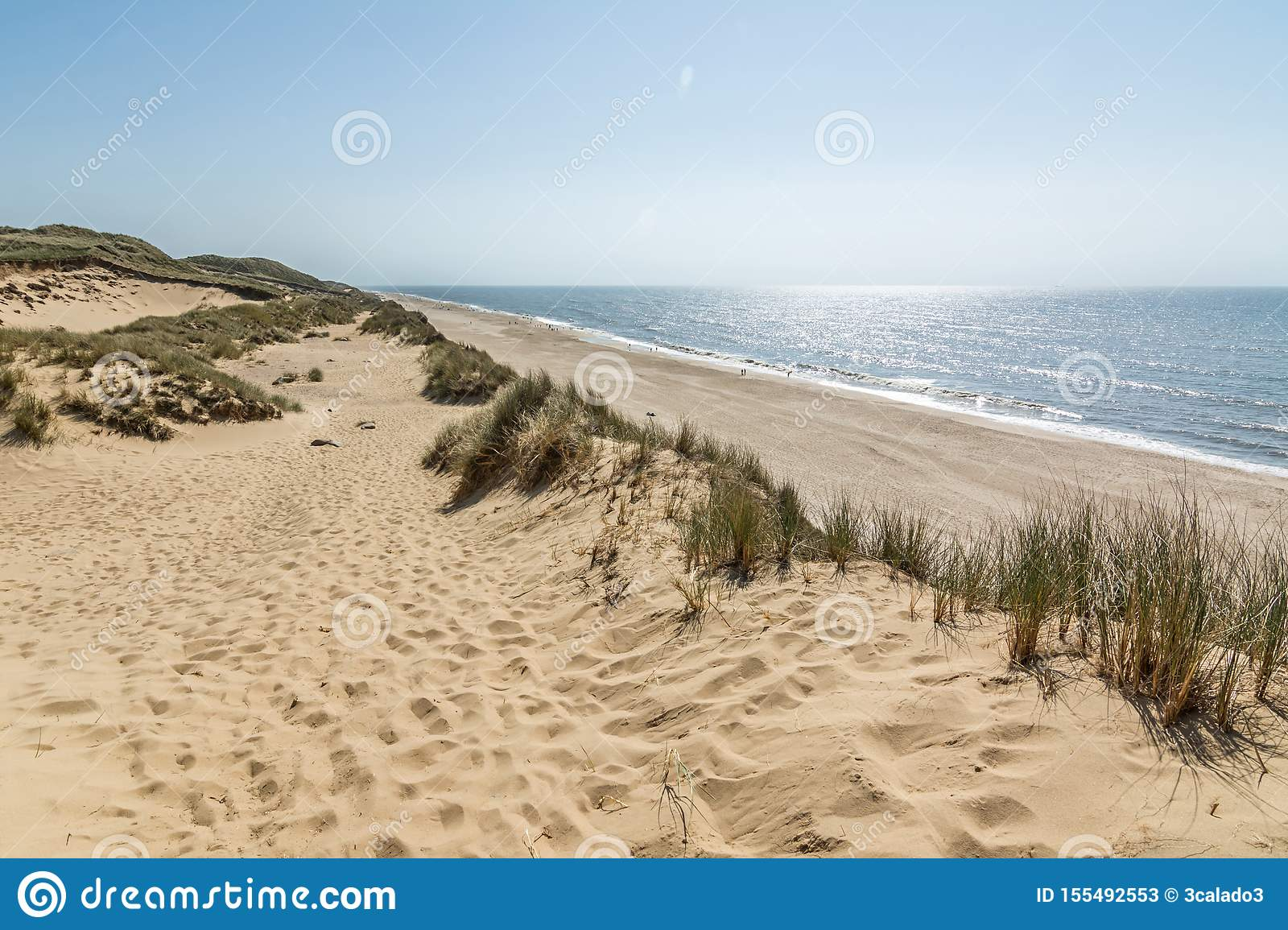 Hiking Trail In Beautiful Dune Landscape With Beach And Ocean In