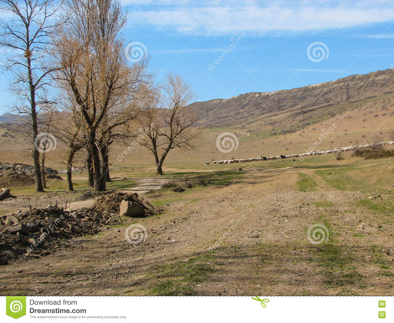 Hill Covered Of Yellow Grass Under Clear Blue Sky Stock