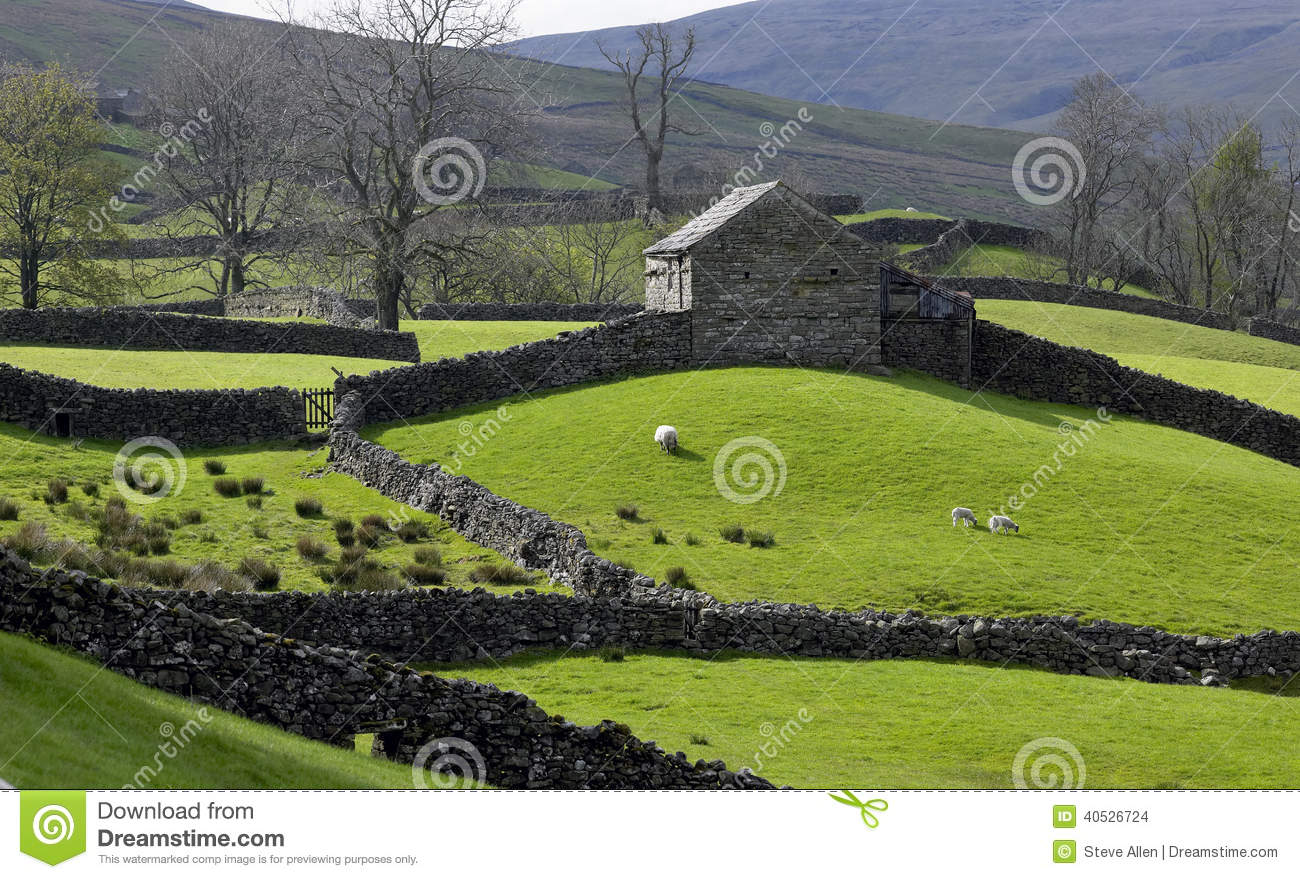 Hill Farm In North Yorkshire England Stock Photo Image