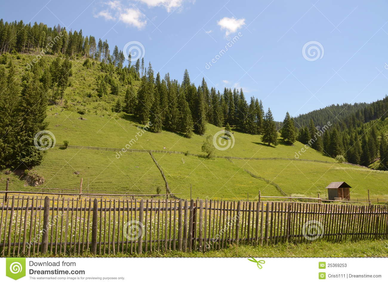 fence hill romania -#main