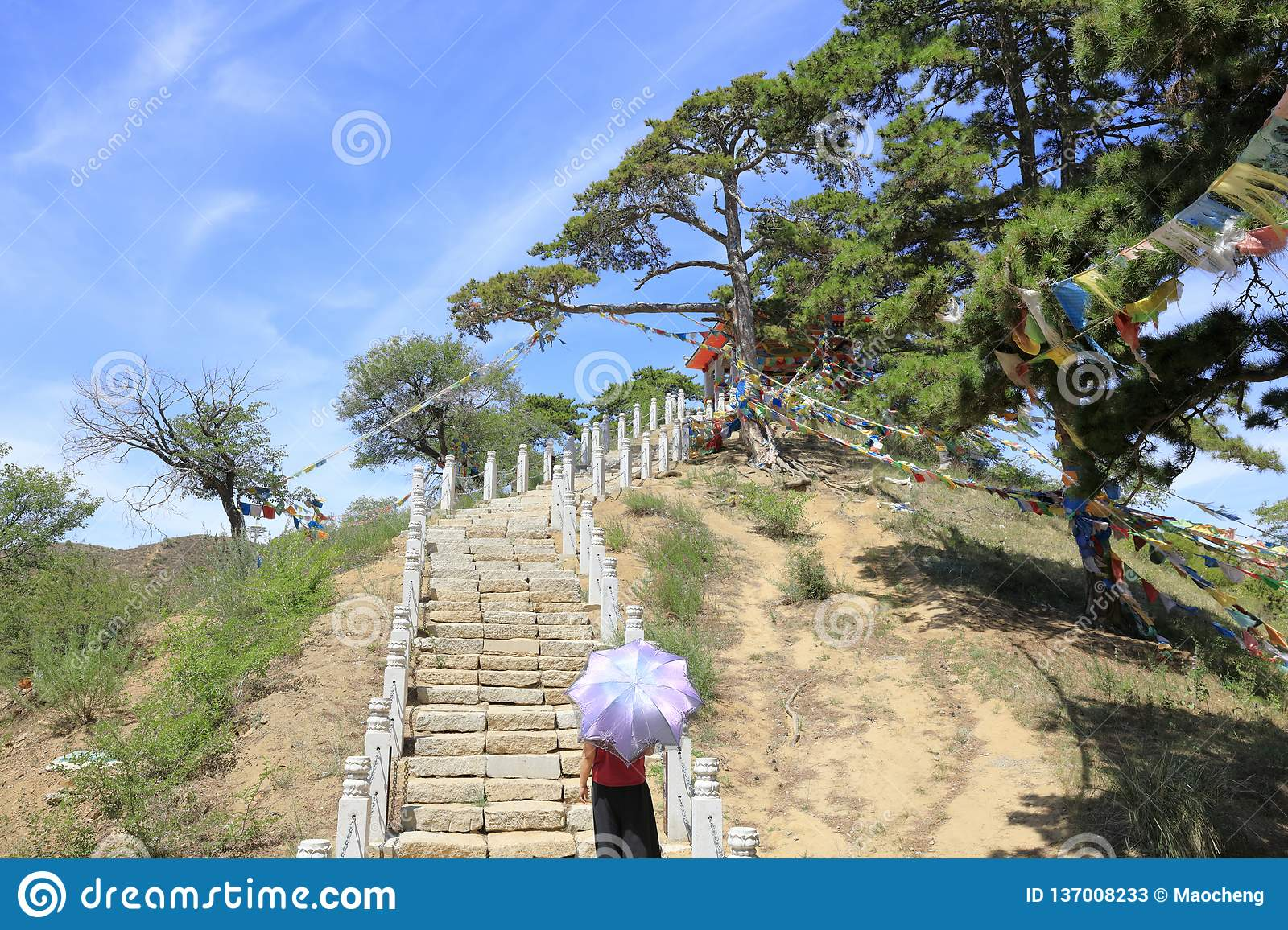 Woman Hold Umbrella And Climb Hill Of Wudangzhao Temple In