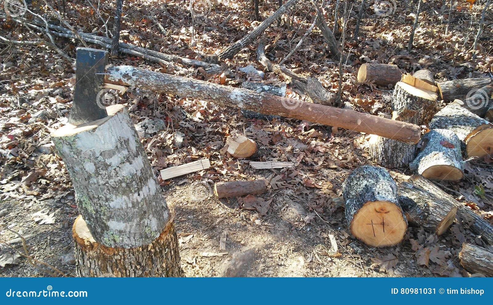 Axe with homemade oak handle