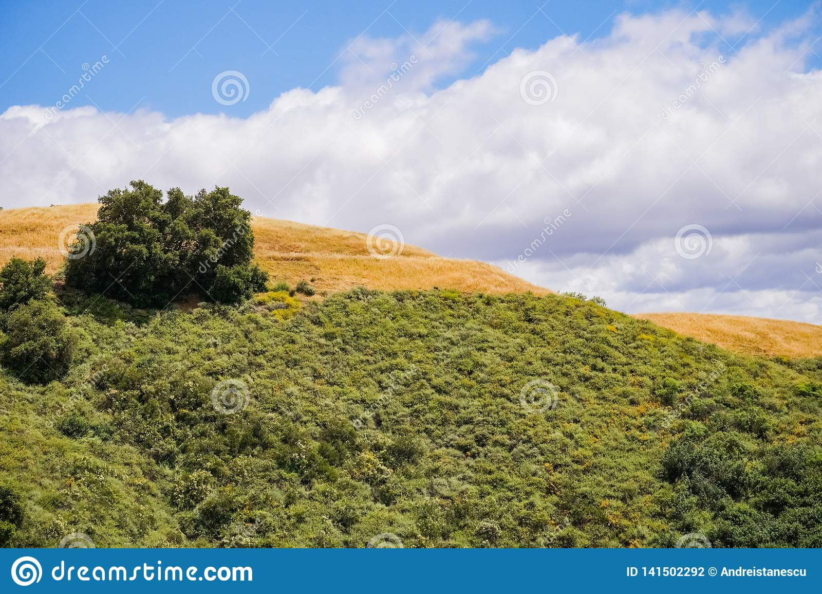 Hills in the Rancho Canada del Oro Open Space Preserve, south San Francisco bay area, San Jose, California