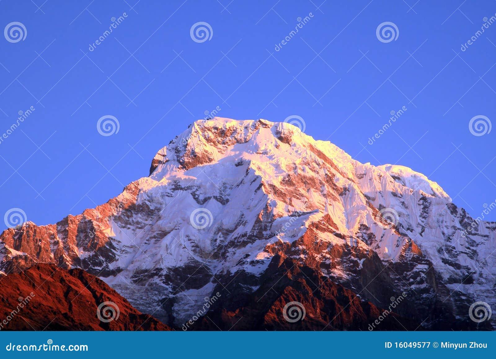 Himalaya bergmaximum
