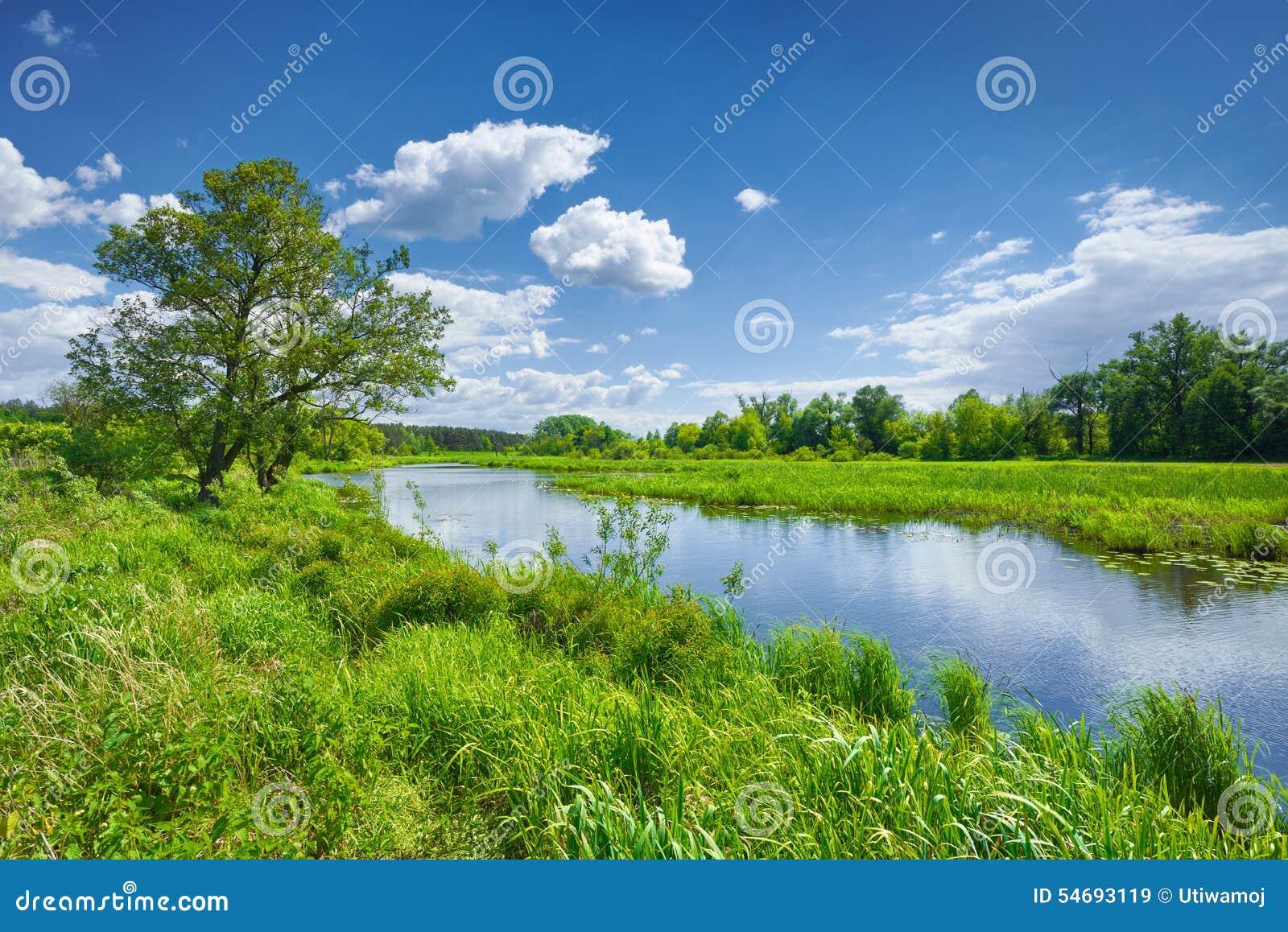 Himmel för landskapet för vårsommarfloden fördunklar blå bygd