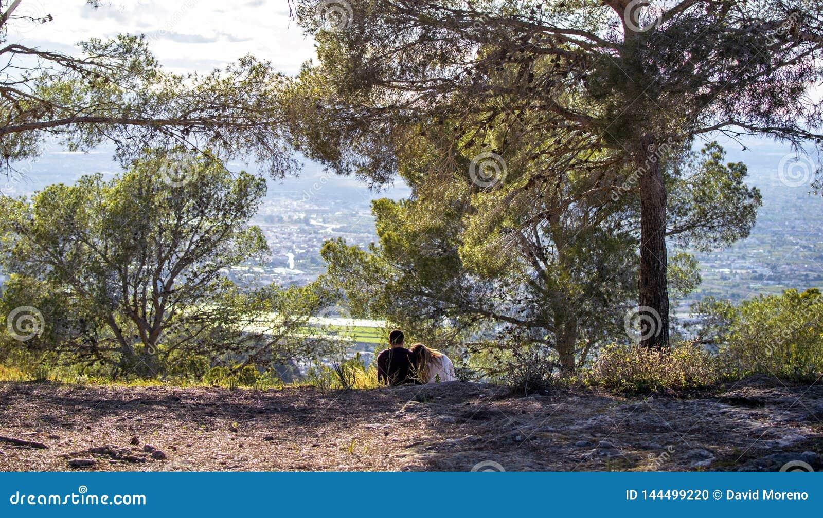 Hintere Ansicht von romantischen Paaren in der Liebe, die auf Rasenfläche sitzt und den Sonnenuntergang über dem Stadtbild aufp