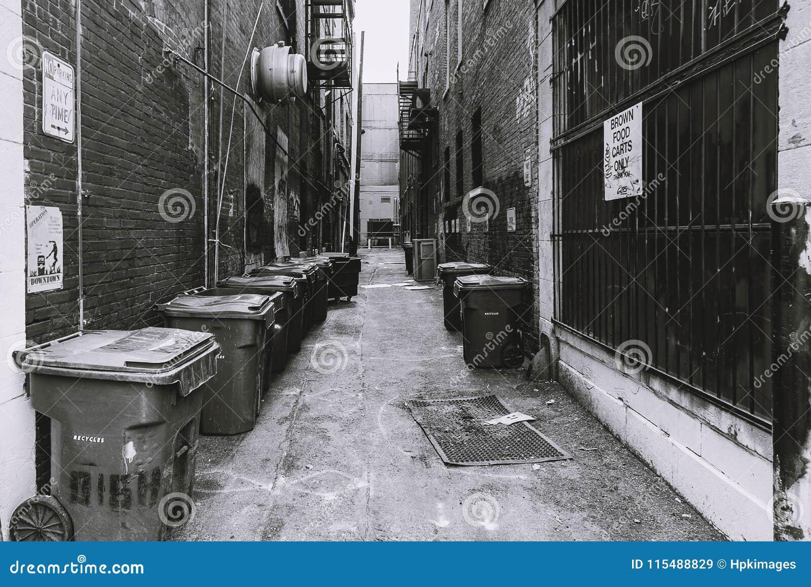 Hintere Gasse mit Mülleimern