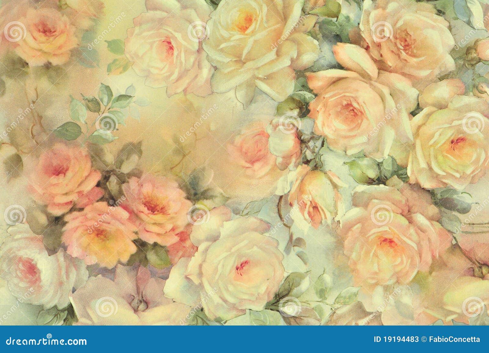 Hintergrund der empfindlichen Rosen