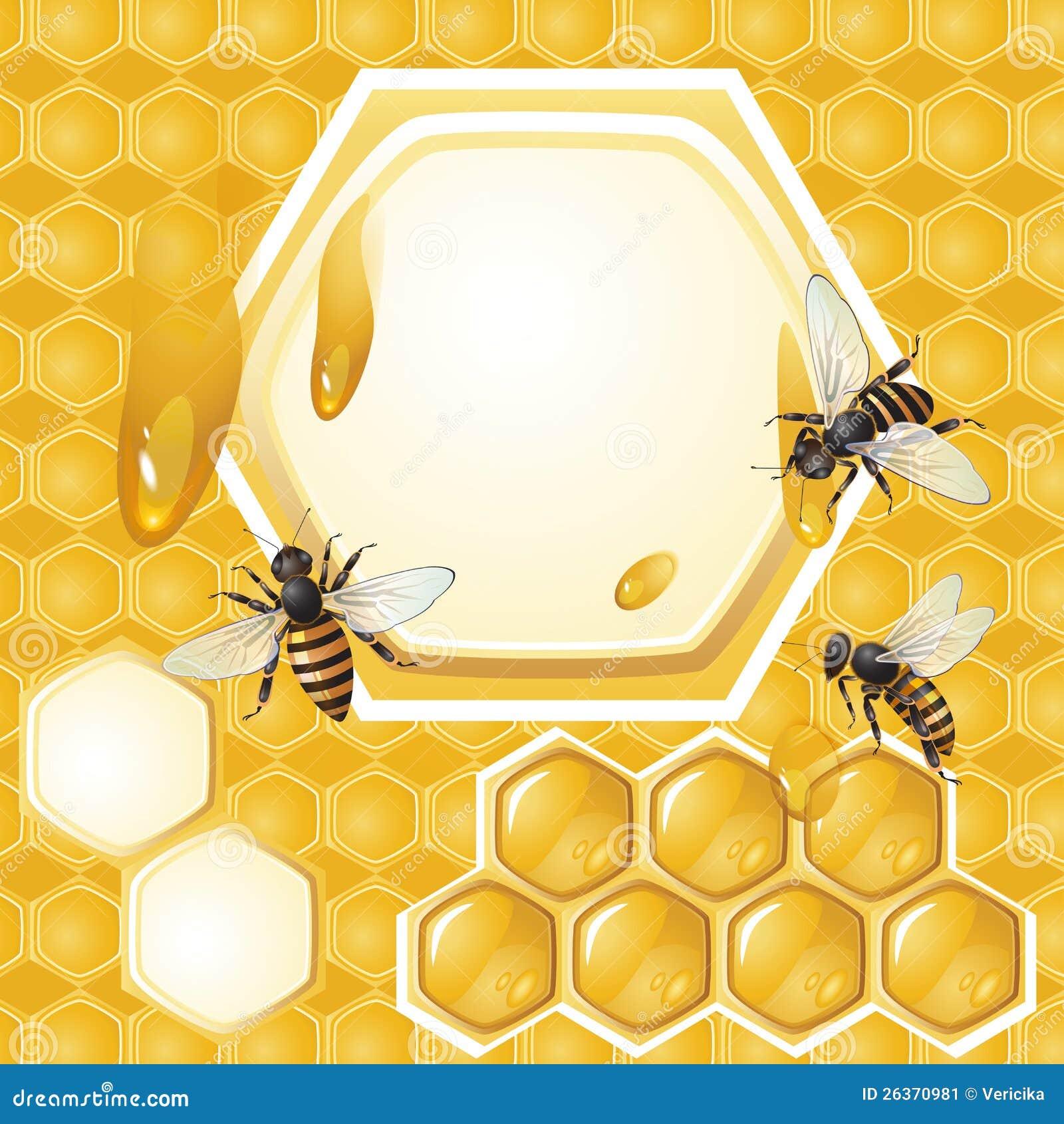 Hintergrund mit Bienen und Bienenwabe
