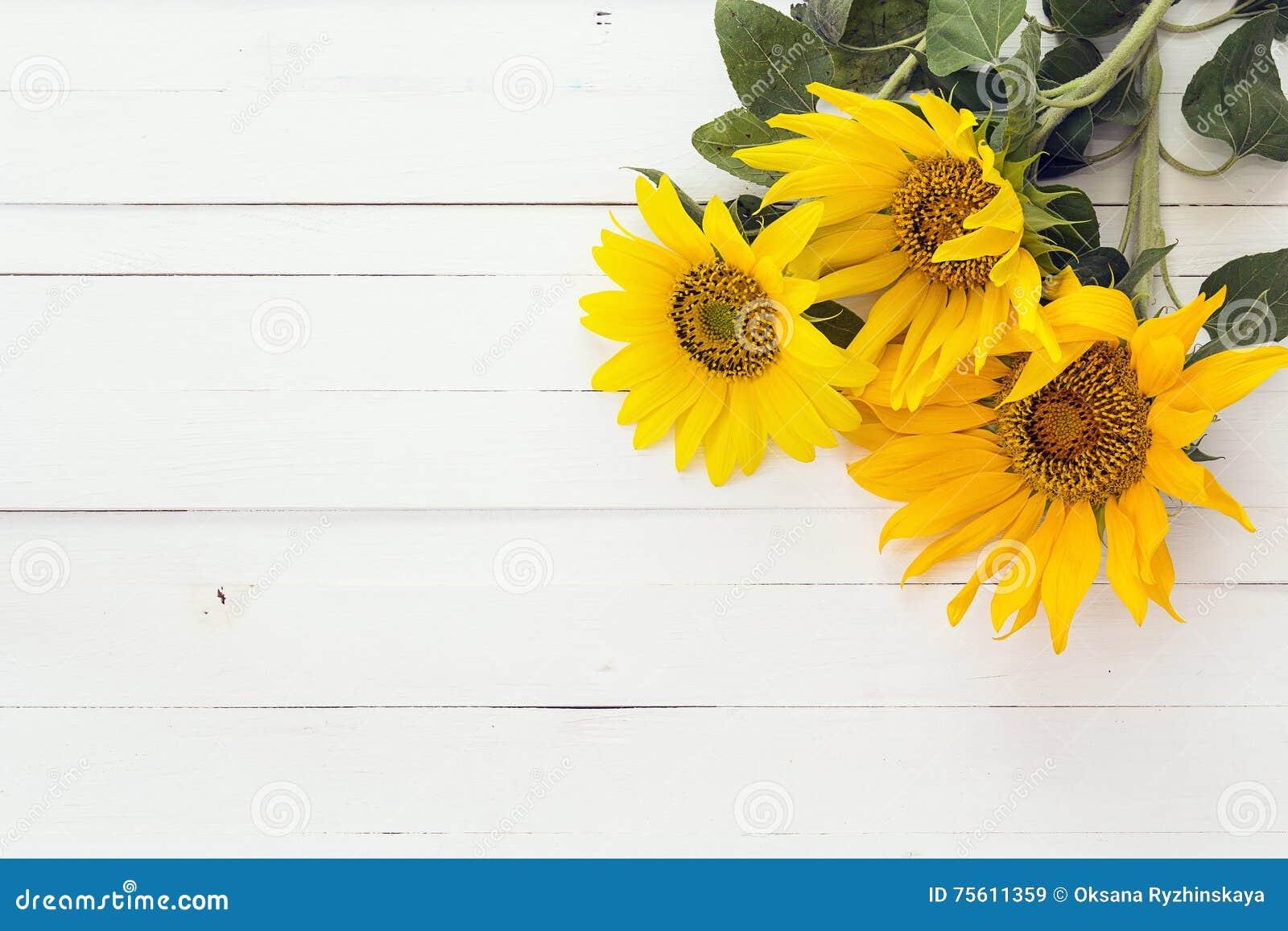 hintergrund mit einem blumenstrau von sonnenblumen auf einem wei malte woode stockbild bild. Black Bedroom Furniture Sets. Home Design Ideas
