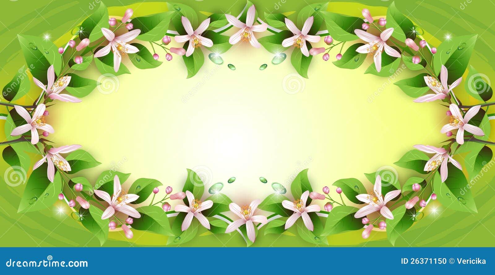 Hintergrund mit empfindlichen Blumen
