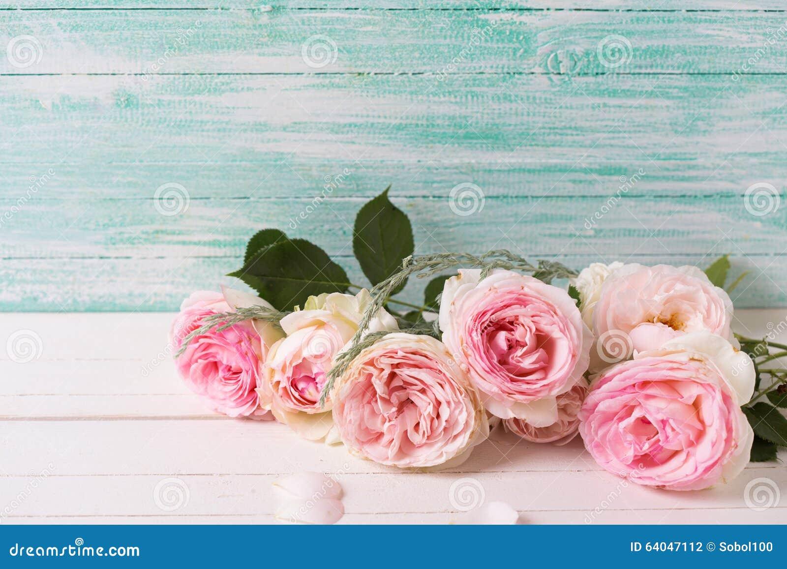 Hintergrund mit süßen rosa Rosen blüht auf dem Weiß gemalt hölzern