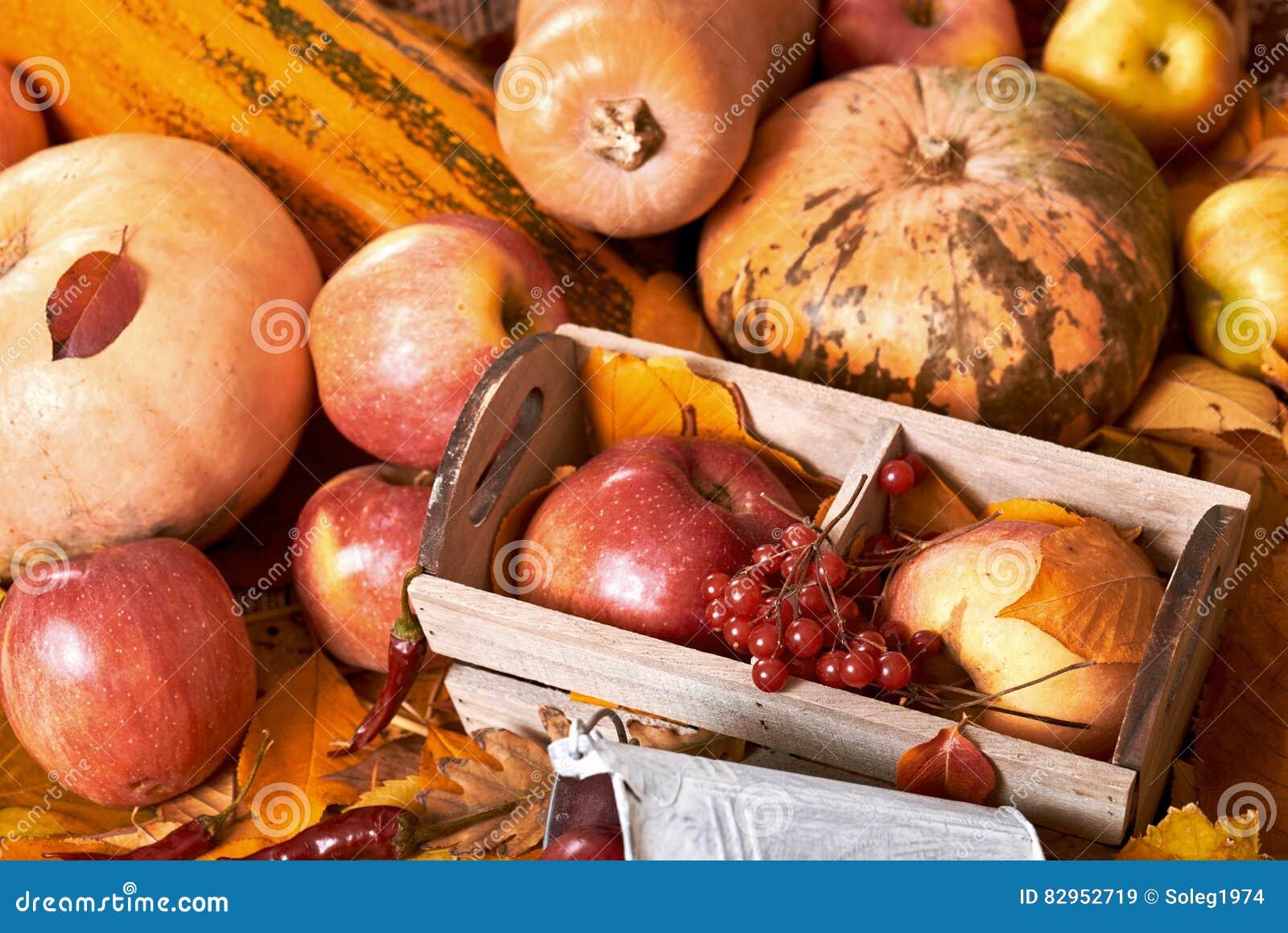 Hintergrund Obst Und Gemuse Auf Gelben Gefallenen Blattern Apfel
