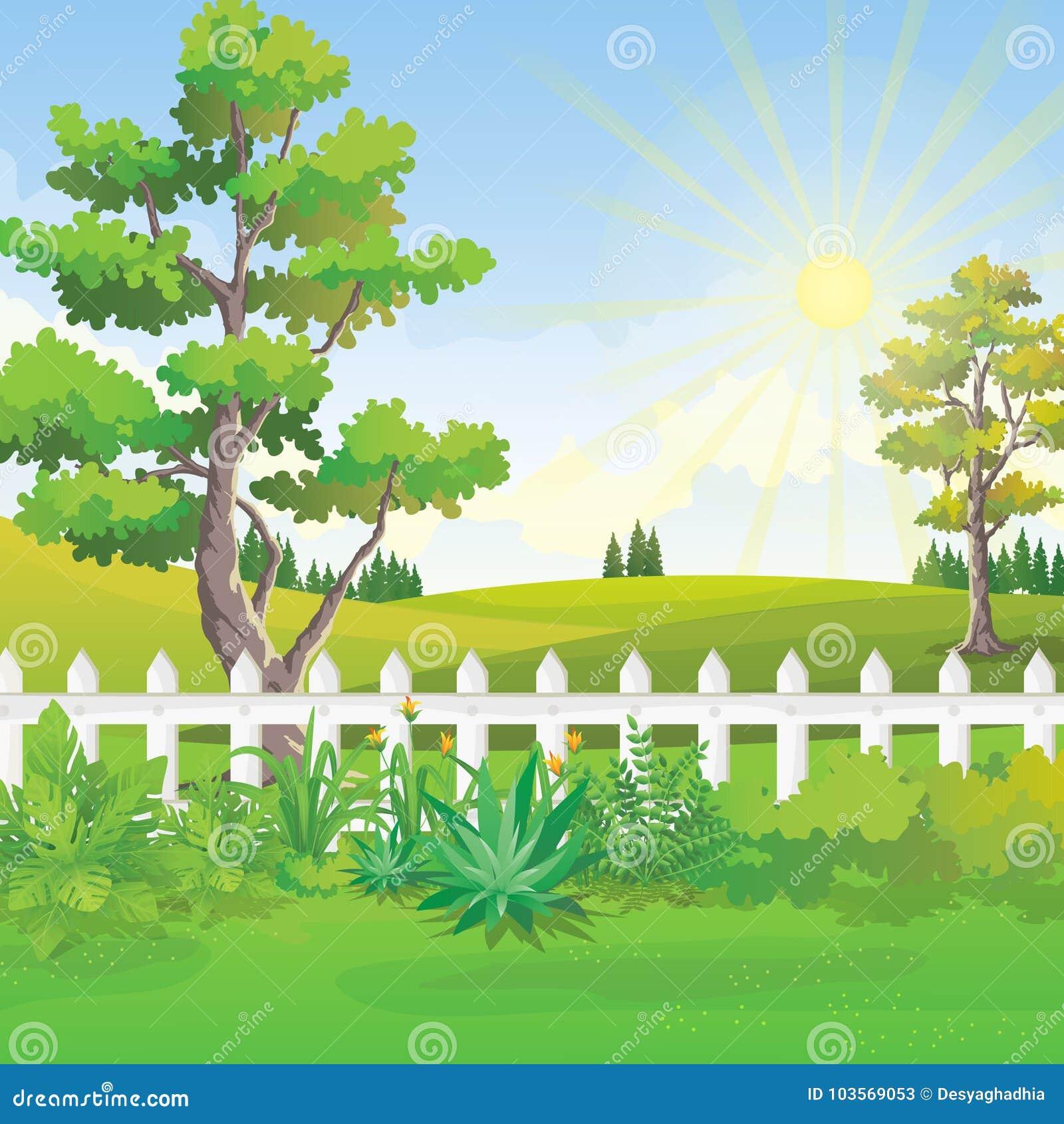 Hinterhof Garten Landschaft Am Sommertag Mit Sonnenlicht Auf Blauem Himmel