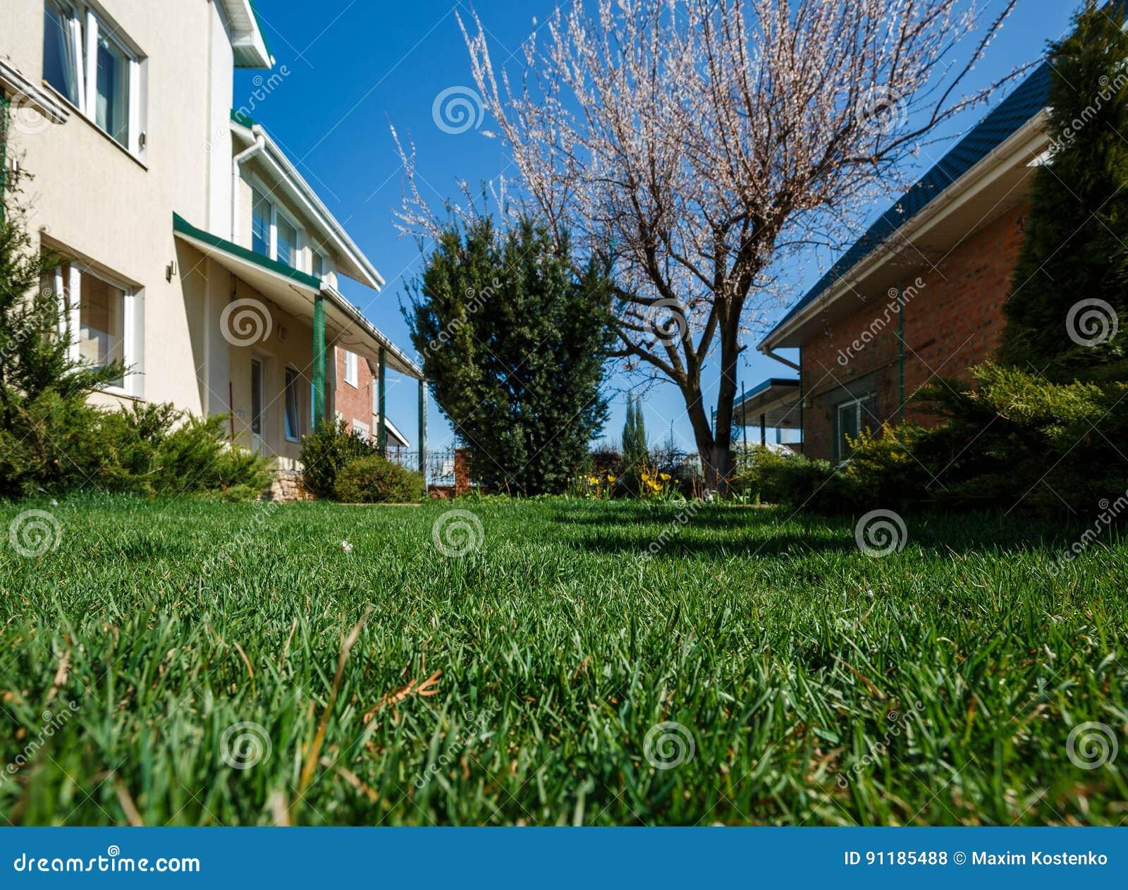 Hinterhofgarten Mit Grunflachen Anlagen Blumen Und Baumen
