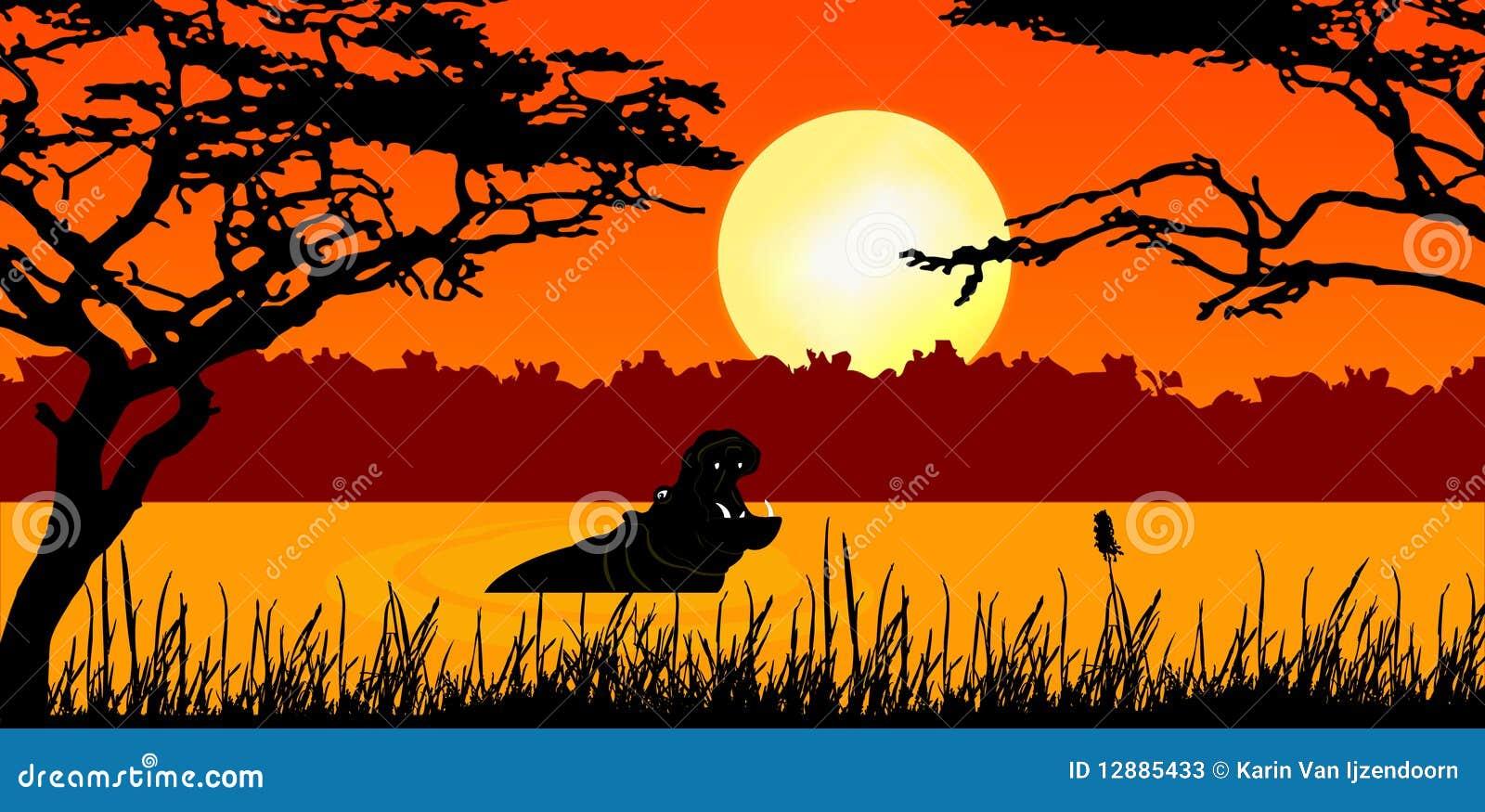 Hipopótamo en puesta del sol