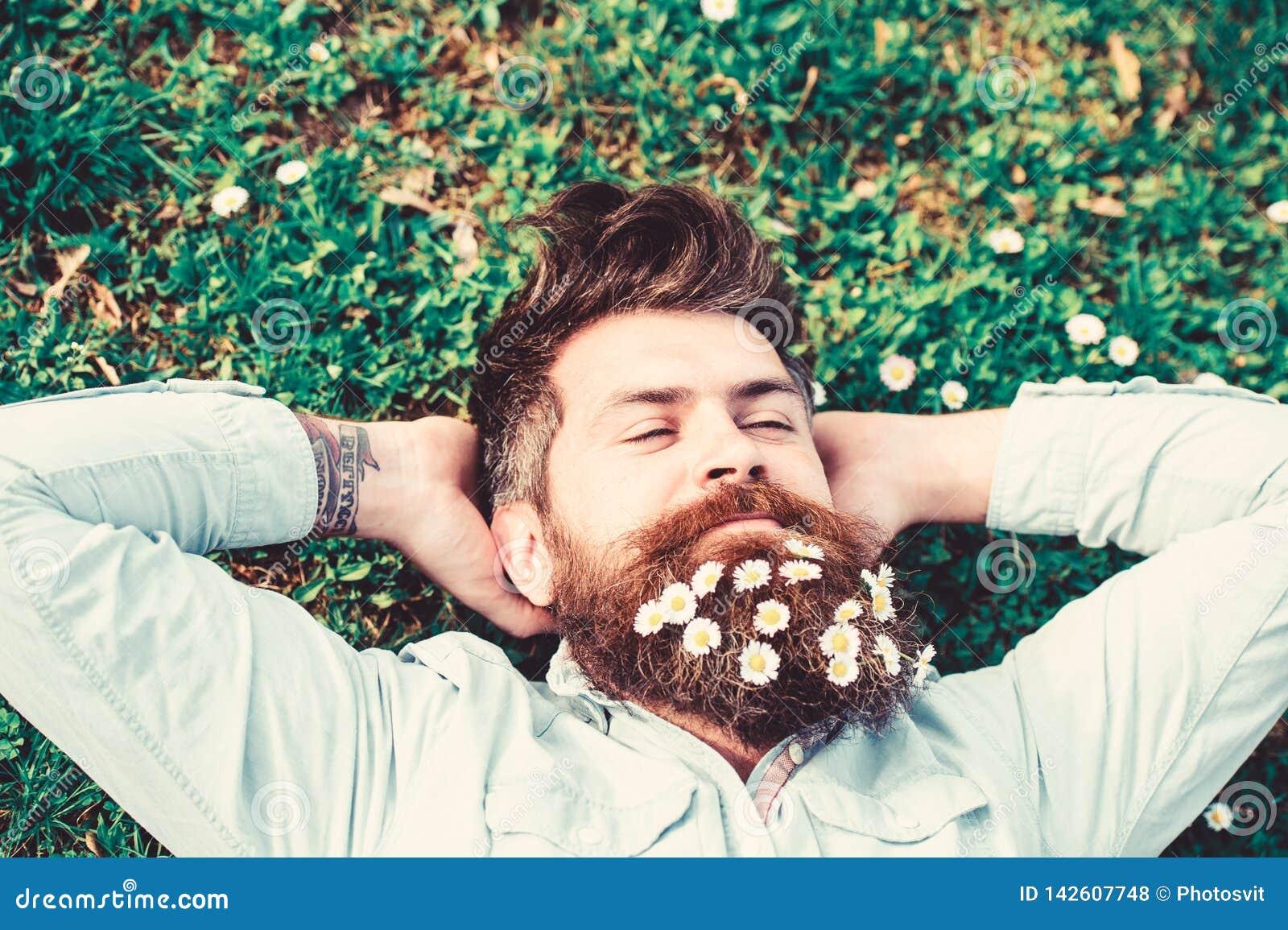 Hipsteren på fridsam framsida lägger på gräs, bästa sikt Grabben ser utmärkt med tusenskönan, eller kamomillen blommar i skägg 30
