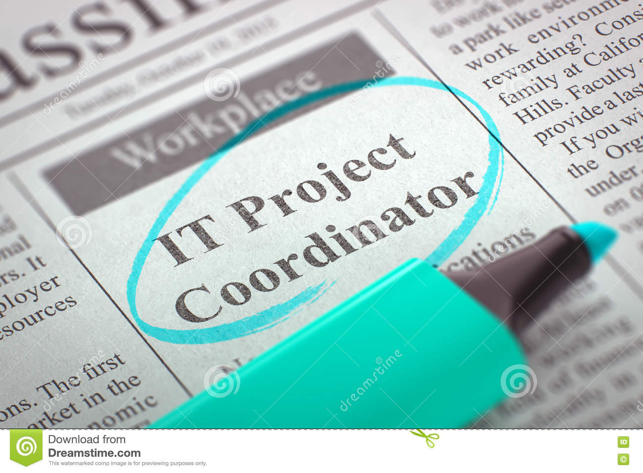 Image result for IT Project Coordinator