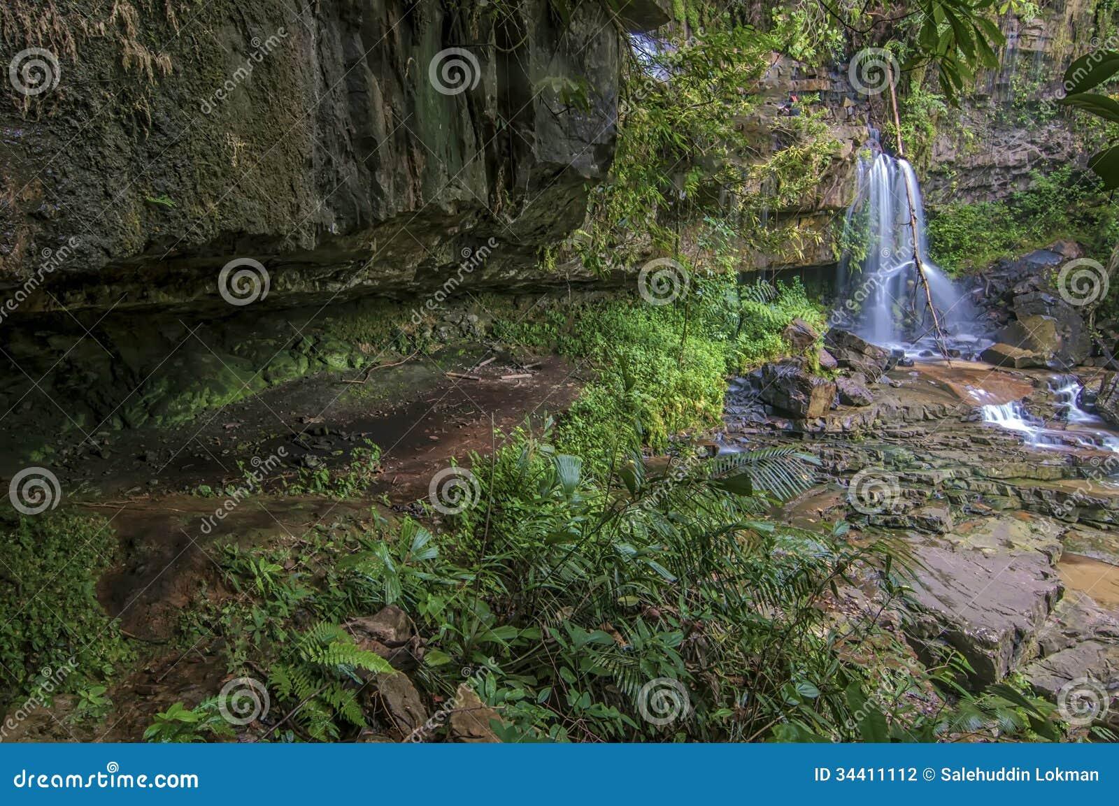 Hisnande plats med grottan under mossig skog