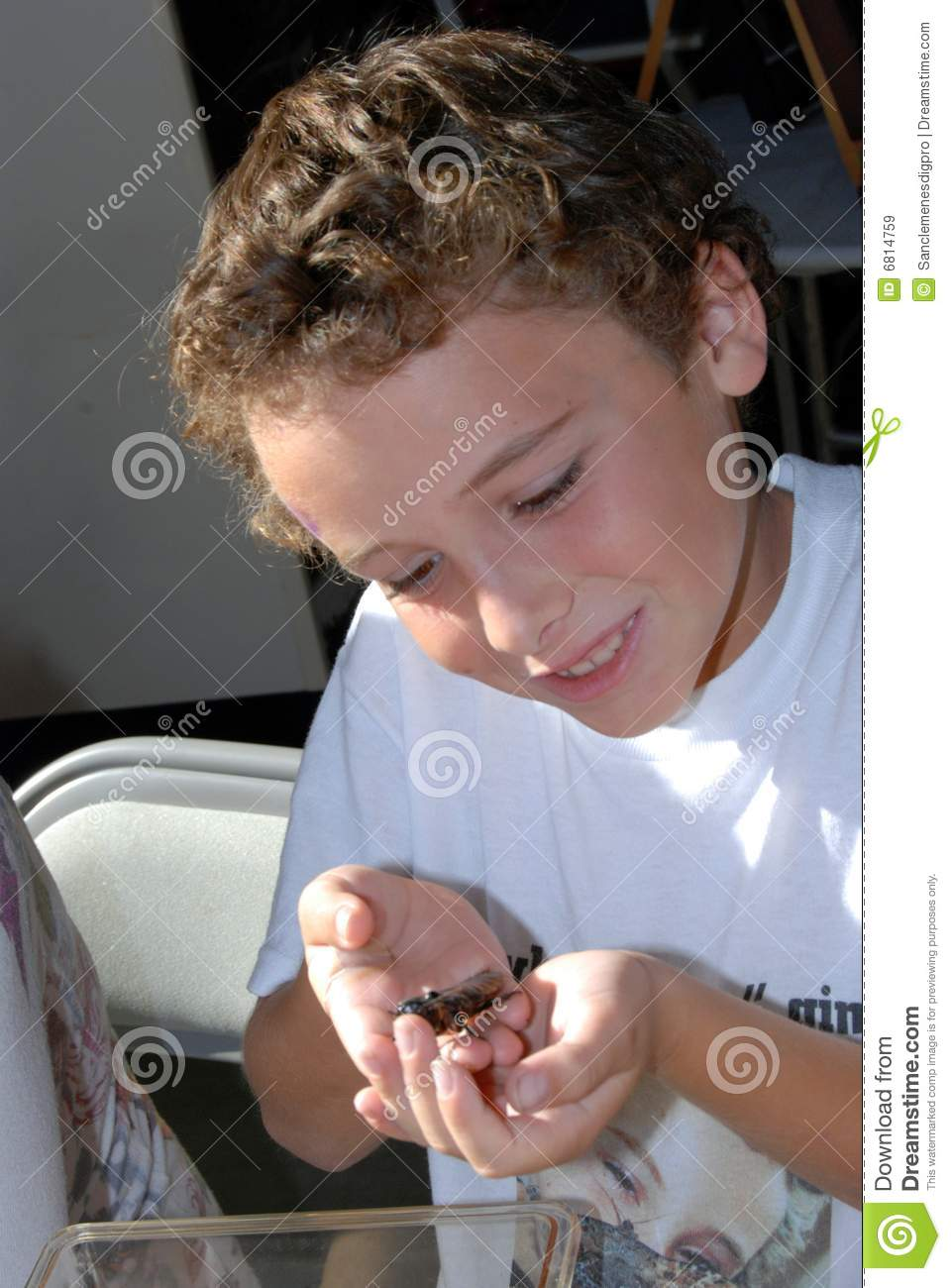 Hissing cockroach in hand