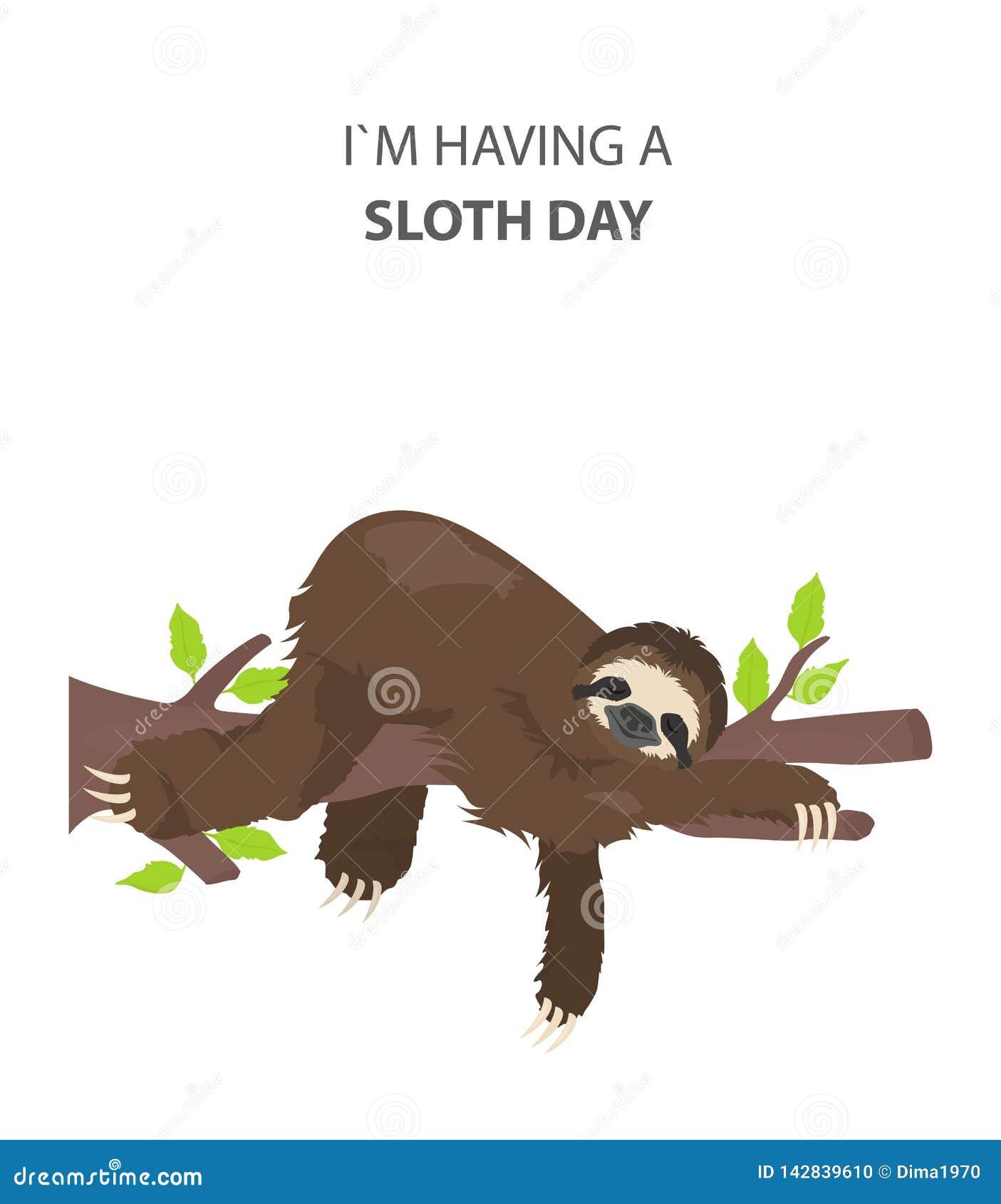 A história de uma preguiça outdoors Preguiças engraçadas dos desenhos animados nas posturas diferentes ajustadas