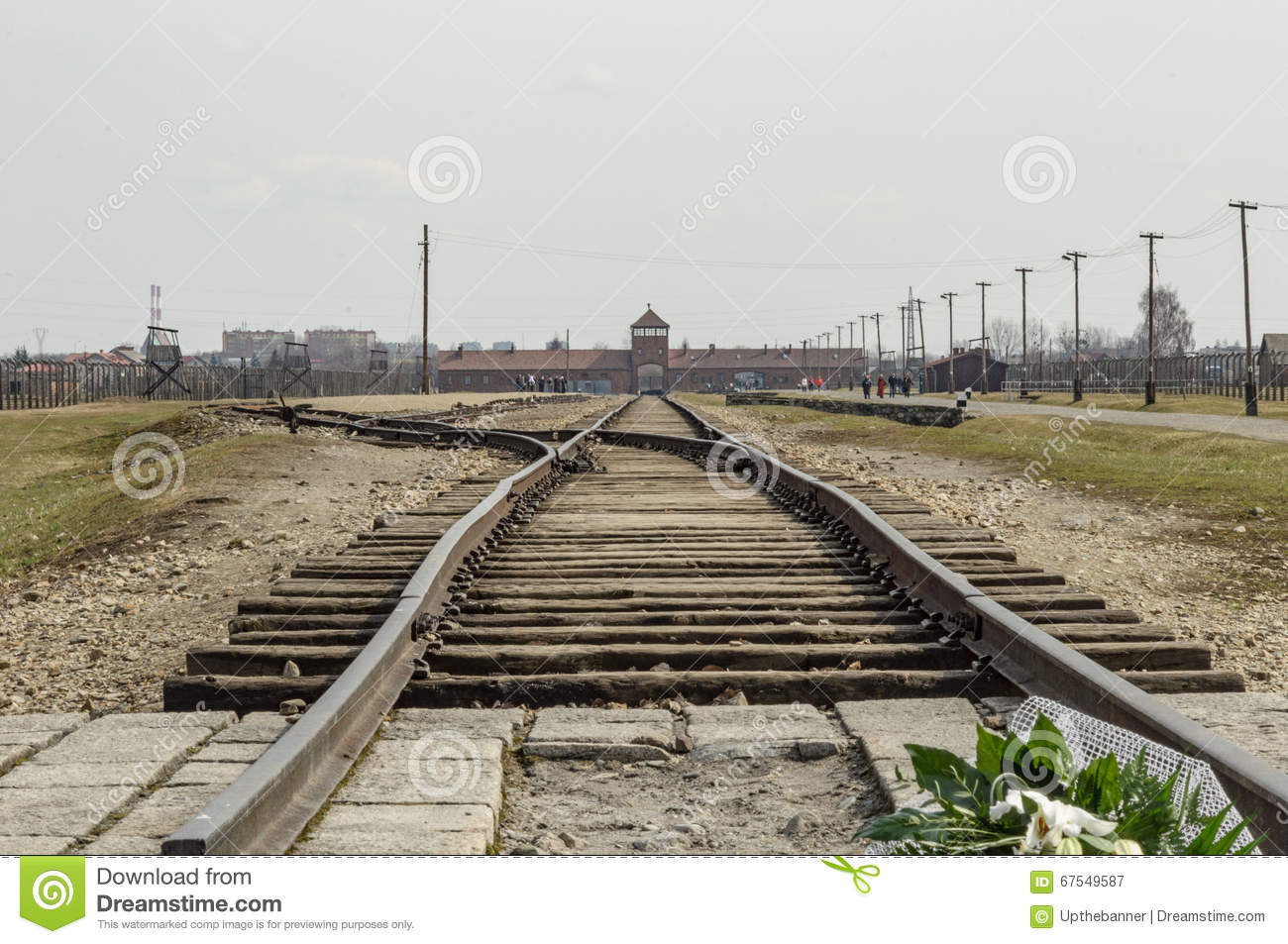 Historical View Of Auschwitz Death Camp In Color Editorial