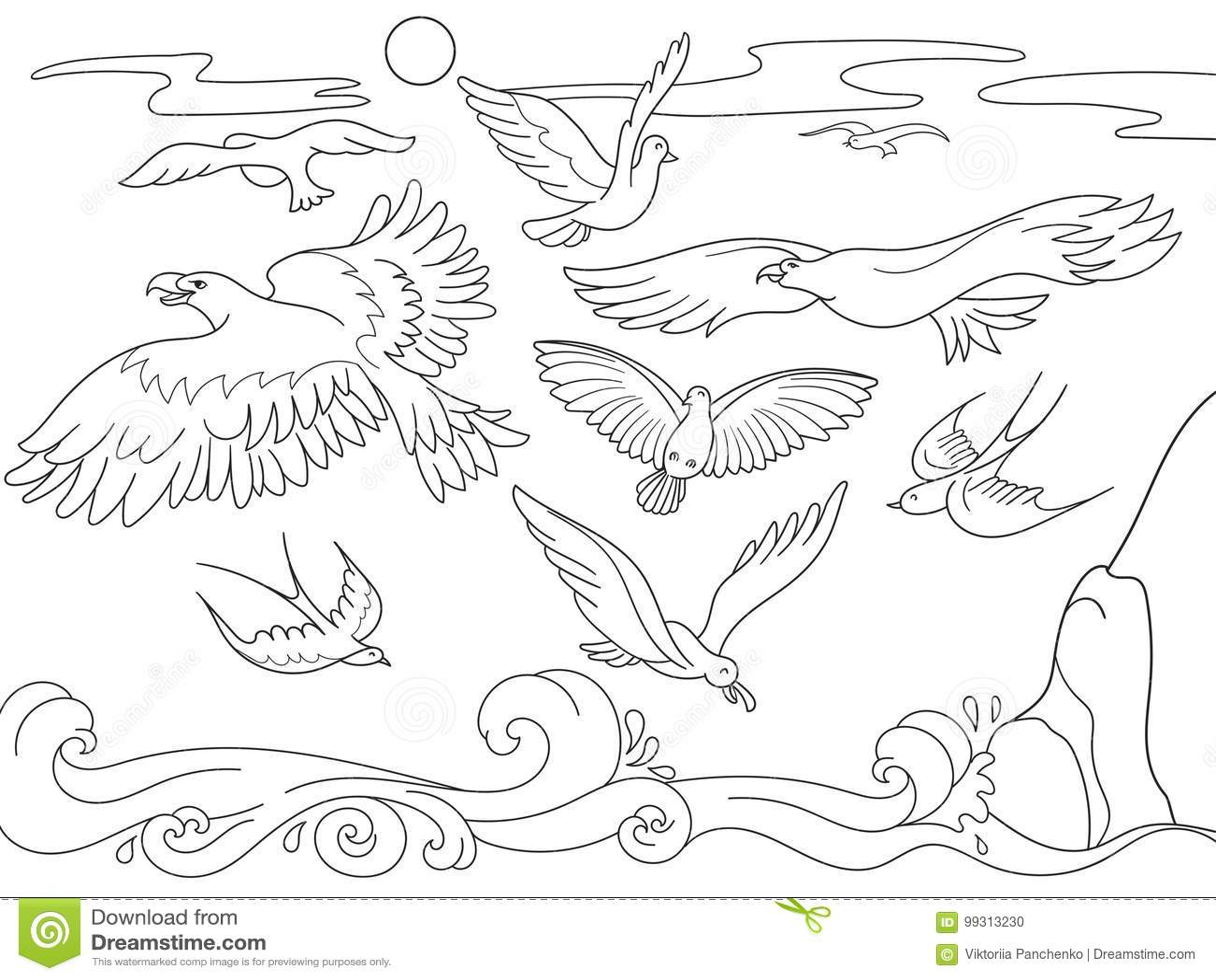 Historieta Del Libro De Colorear Para Los Niños Sobre Los Pájaros De ...