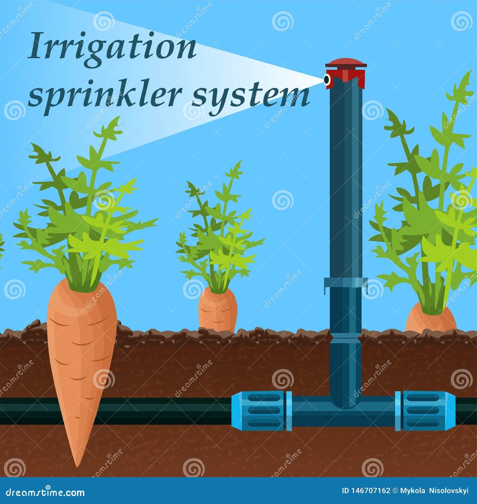 Historieta que pone letras al sistema de rociadores de la irrigación